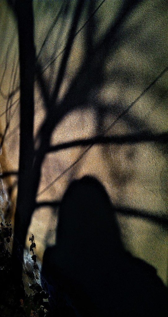 The Shadow Project. ©Shorena Ratiani Photography