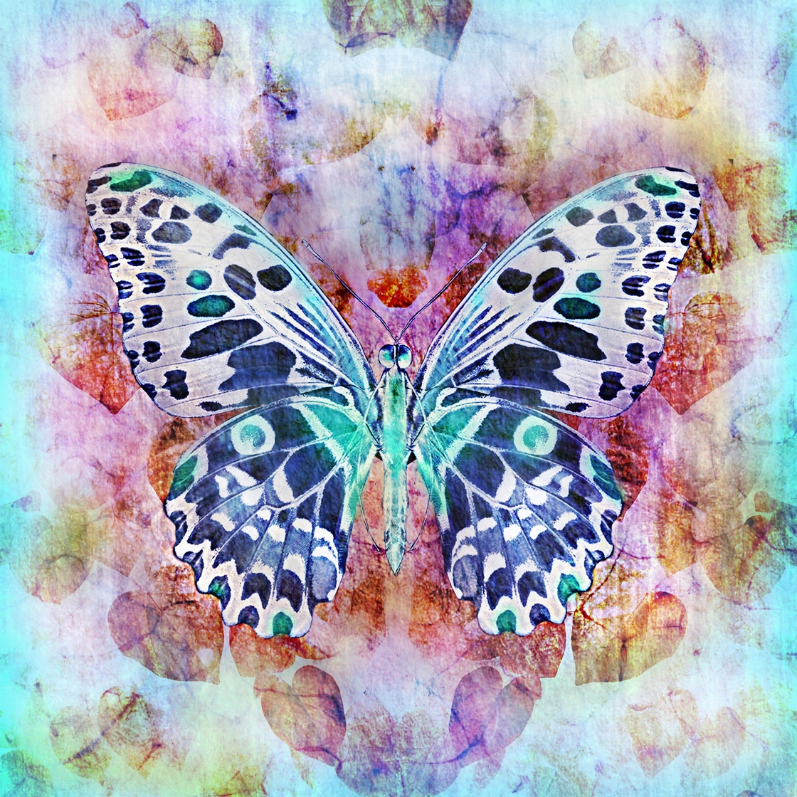 Butterflies are deep and powerful representations of  change and life.  I love changes and challenges. I love life and possibilities it gives us. I love to paint butterflies.